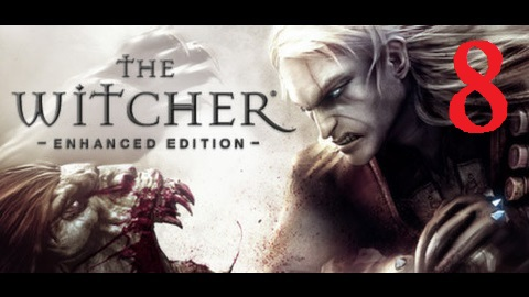 The Witcher 8