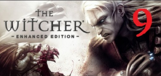 The Witcher 9