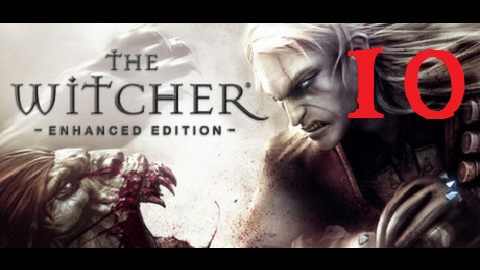 The Witcher 10