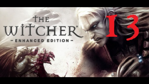The Witcher 13