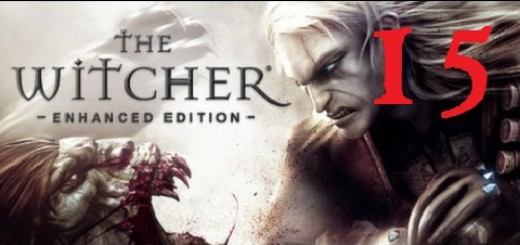 The Witcher 15