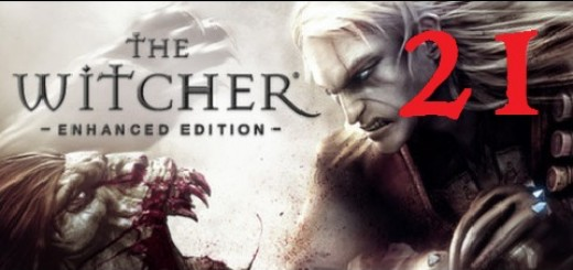 The Witcher 21