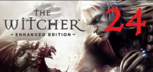 The Witcher 24