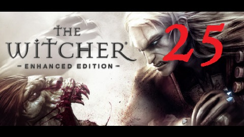 The Witcher 25