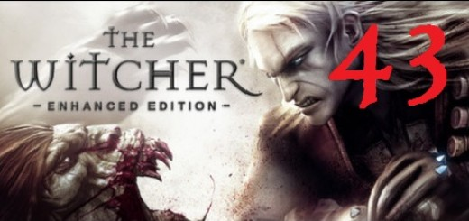 The Witcher 43