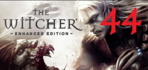 The Witcher 44